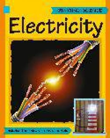 Starting Science: Electricity by Sally Hewitt