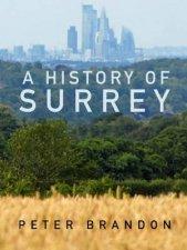 A History Of Surrey