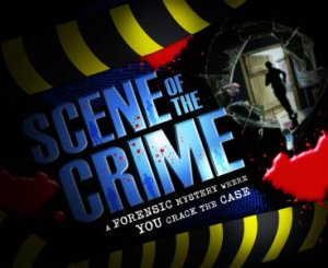 Scene of The Crime by Malcolm Rose