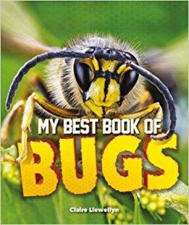 My Best Book Of Bugs by Claire Llewellyn