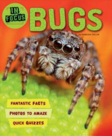 In Focus: Bugs by Barbara Taylor