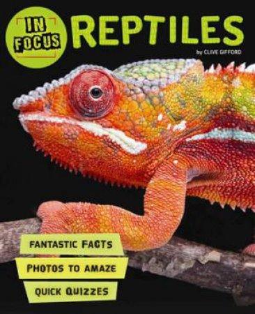 In Focus: Reptiles by Barbara Taylor