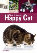 How to have a Happy Cat