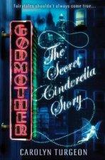 Godmother the Secret Cinderella Story