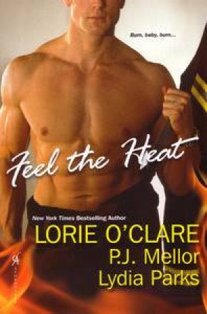 Feel the Heat by Lorie O'Clare & P J Mellor & Lydia Parks