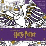 Harry Potter Winter at Hogwarts A Magical Coloring Set