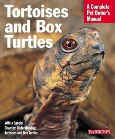 Tortoises & Box Turtles by Cpom - Other