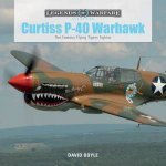 Curtiss P40 Warhawk The Famous Flying Tigers Fighter