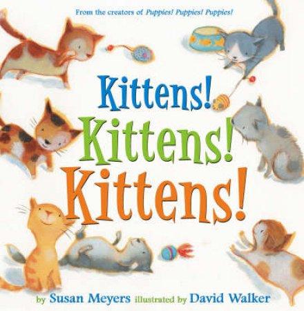 Kittens! Kittens! Kittens! by Susan Meyers