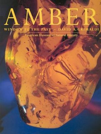 Amber:Window To The Past by Grimaldi David A