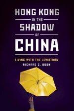 Hong Kong in the Shadow of China
