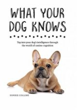 What Does Your Dog Know? by Sophie Collins