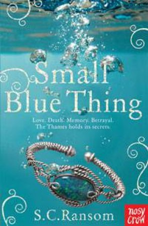 Small Blue Thing by S.C. Ransom