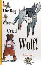 The Boy Who Cried Wolf  Big Book