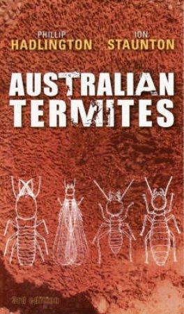 Australian Termites by Phillip Hadlington & Louise Beck & Ion Staunton