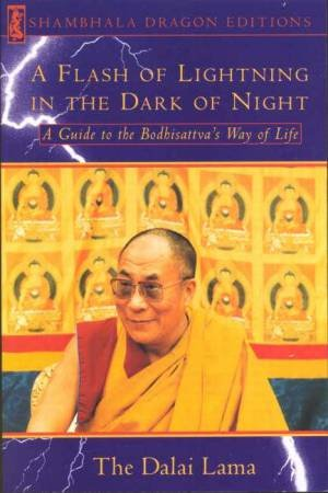 A Flash Of Lightning In The Dark Of Night by The Dalai Lama