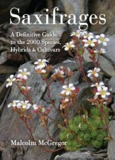 Saxifrages The Definitive Guide to 2000 Species Hybrids and Cultivars