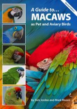 A Guide to Macaws