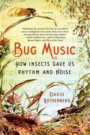 Bug Music by David Rothenberg