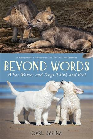 Beyond Words: What Wolves And Dogs Think And Feel (A Young Reader's Adaptation) by Carl Safina & Carl Safina