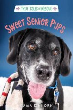 Tales of Rescue And Release Sweet Senior Pups