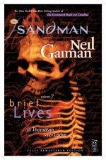 The Sandman Vol 7 Brief Lives 30th Anniversary Edition