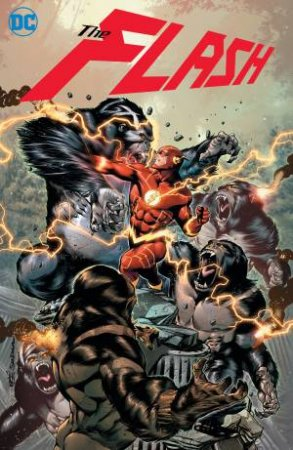 The Flash Vol. 10 Force Quest