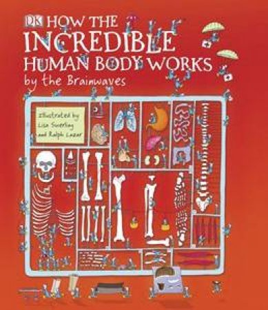 How the Incredible Human Body Works By The Brainwaves by Richard Walker