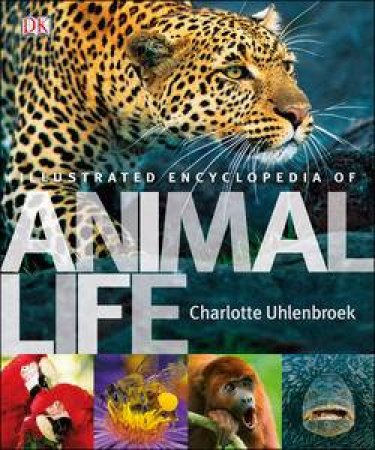 Illustrated Encyclopedia of Animal Life by Charlotte Uhlenbroek