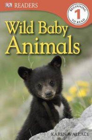 Wild Baby Animals DK Reader Level 1 by Various