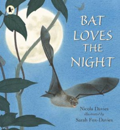 Bat Loves the Night by Nicola Davies & Sarah Fox-Davies