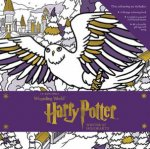 Harry Potter: Winter at Hogwarts: A Magical Colouring Set by Various