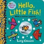Hello Little Fish A Mirror Book