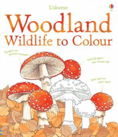 Woodland Wildlife to Colour by Susan Meredith