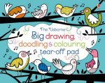 Big Drawing, Doodling and Colouring Tear-off Pad by Fiona Watt