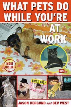 What Pets Do While You're At Work by Jason/West, Bev Bergund