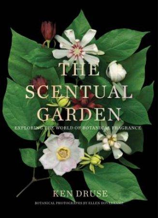 The Scentual Garden by Ken Druse & Ellen Hoverkamp & Ellen Hoverkamp