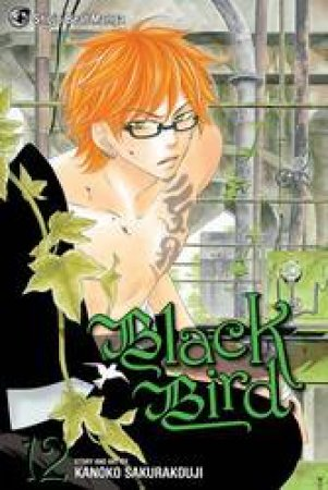 Black Bird 12 by Kanoko Sakurakoji