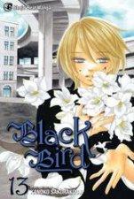 Black Bird 13