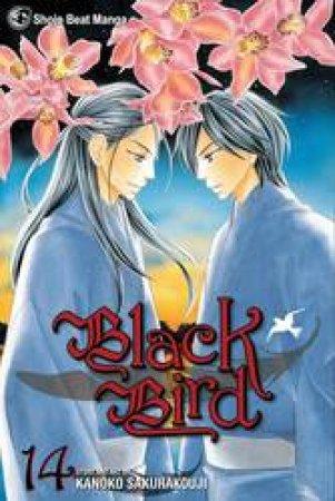 Black Bird 14 by Kanoko Sakurakoji