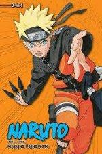 Naruto 3in1 Edition 10