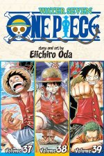One Piece 3in1 Edition 13
