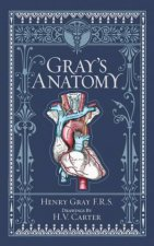 Sterling Leatherbound Classics Grays Anatomy