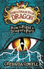How to Fight a Dragons Fury