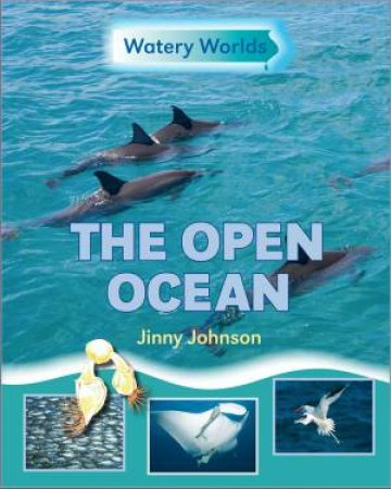 Watery Worlds: The Open Ocean