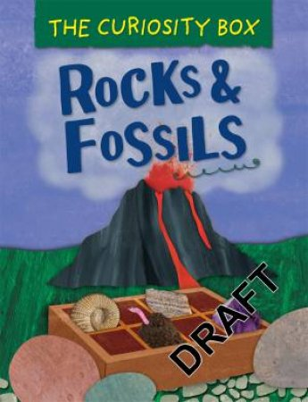 The Curiosity Box: Rocks And Fossils by Peter Riley