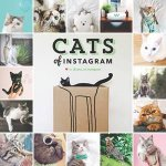 Cats On Instagram by Various