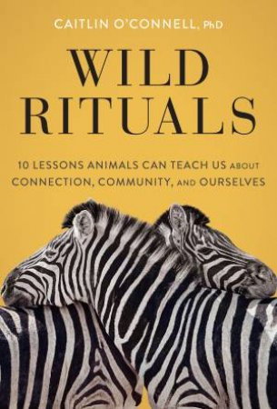 Wild Rituals by Caitlin O'Connell