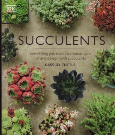 Succulents by Various