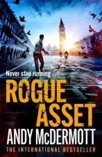 Rogue Asset
